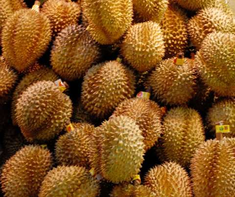 durian-king-of-fruits.jpg